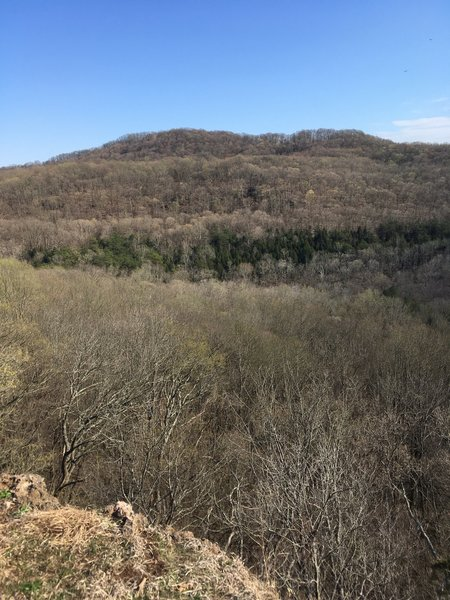 Southern view from Buzzardroost Rock Overlook