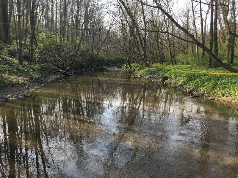 West Fork Mill Creek