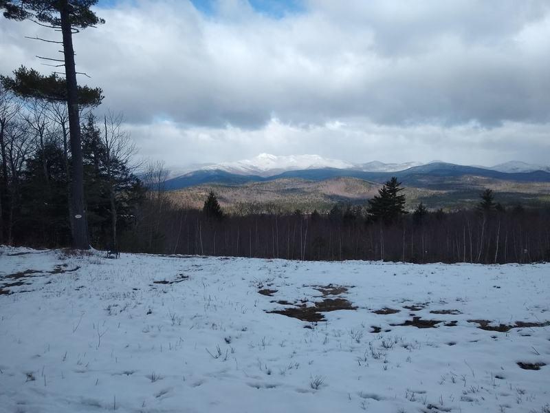 Cocorua View