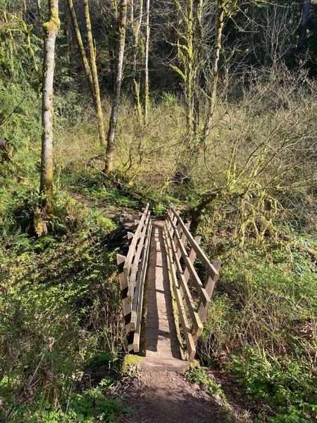 Bridge over a small creek