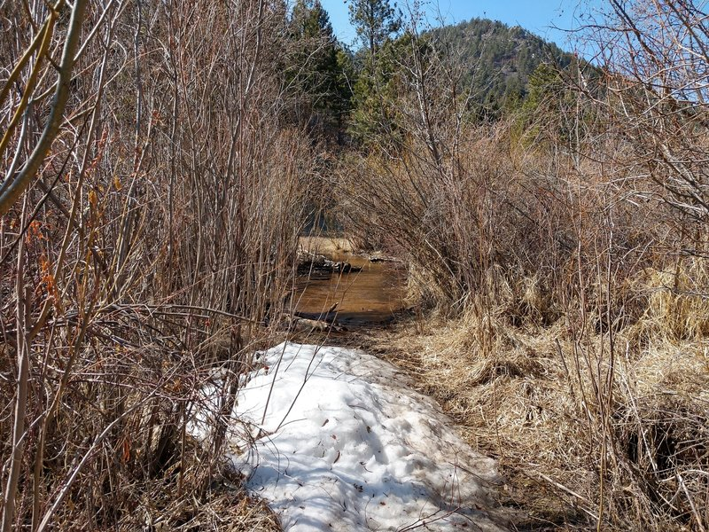 Crossing Bear Creek in early April.