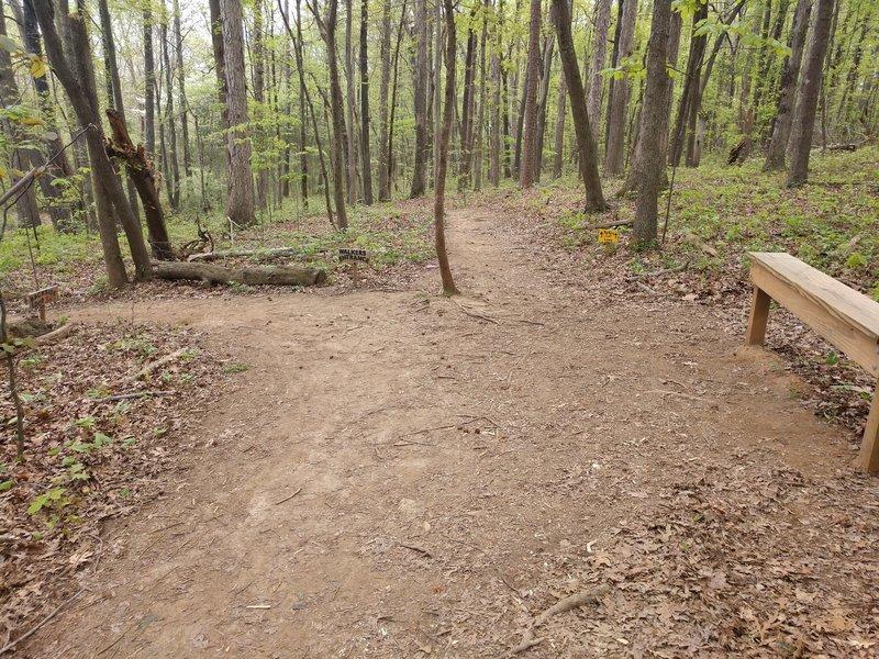 Purser-Hulsey Backside Loop Hiker Entrance