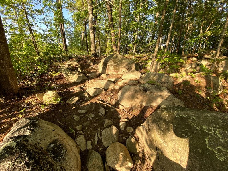 One of the rocky sections along Wildwind Trail