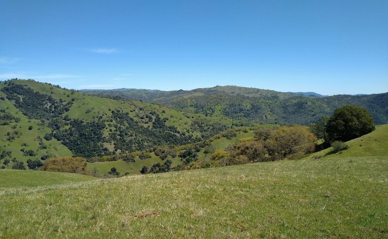 The Diablo Range hills seem to go on forever to the east of the grassy ridge traversed by Pala Seca Trail.