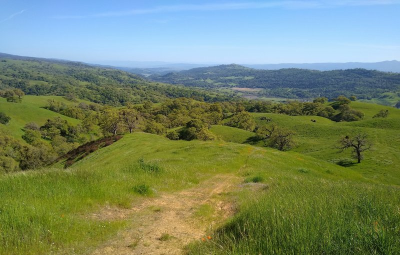 Center left, very far distance is Monterey Peninsula. In front of it in the distance is Anderson Lake in Santa Clara Valley below these Diablo Range hills. Blue Santa Cruz Mountains, and San Felipe Creek Valley and its west ridge (right distance).