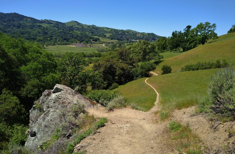 The broad San Felipe Creek Valley and wooded hills to the west, when descending Loop Trail.