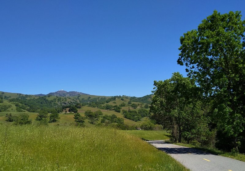 The wooded and grass hills of the Diablo Range, including Mt. Hamilton, 4,265 ft., with Lick Observatory on its summit, are seen to the east from Grant Trail.