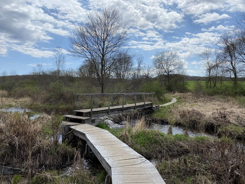 Bridge Over Marsh/Stream