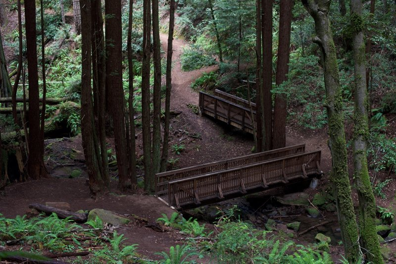Bridges cross the El Corte de Madera Creek on the Methuselah Trail.  Its a nice place to take a break.
