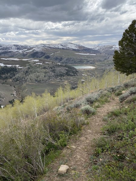 Mill Canyon Trail