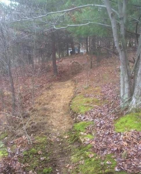 This is one of the hand-built singletrack trails featured on the ride.
