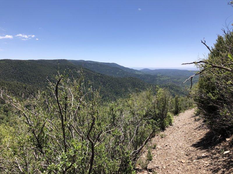 Views along Alamo Peak Trail #109