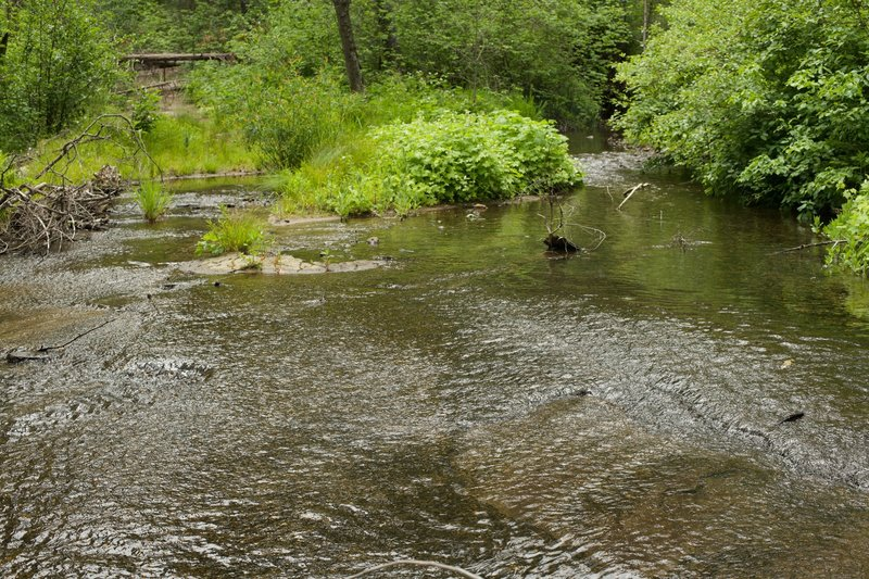 The creek floors the road in the spring.   The only way across is to walk through the water, which isn't deep but your shoes will get wet!