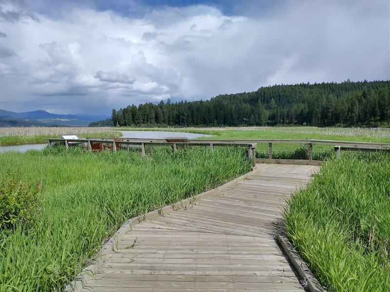 Plummer Creek Boardwalk