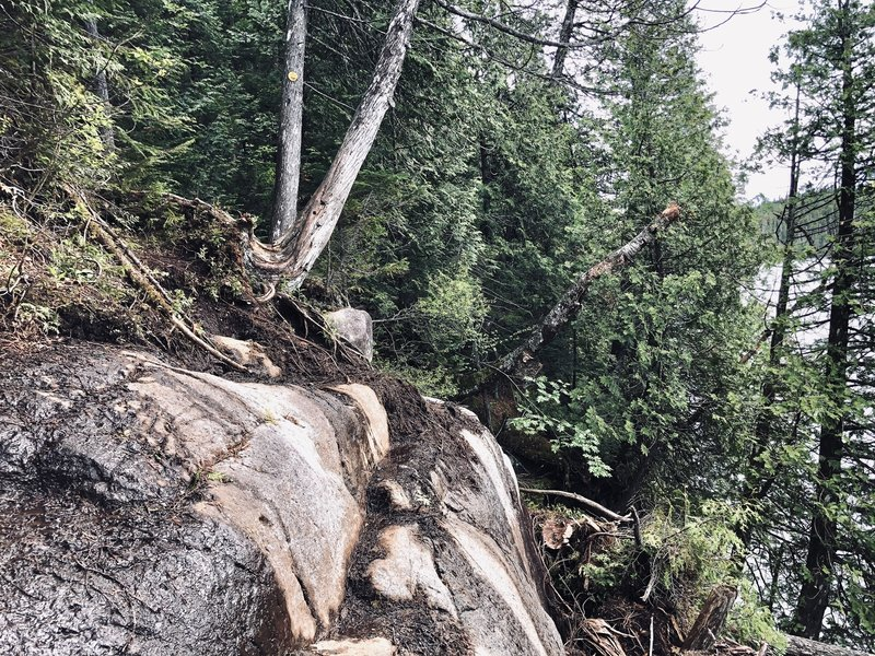 Collapsed trail along Lake Colden.