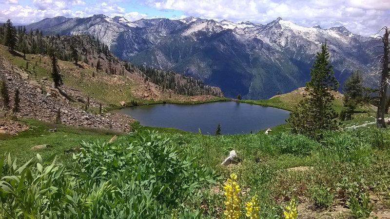 White Trinities from Diamond Lake.