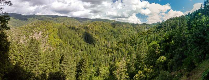 View from Deadwood Ridge.