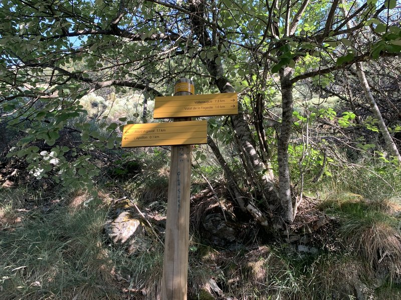On the way to the Mont Aigoual - the signs.