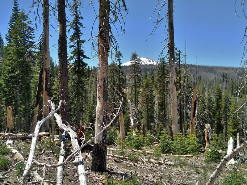 Lassen Peak is seen in the distance to the west, just before dropping down to Rainbow Lake on Rainbow Lake Trail.