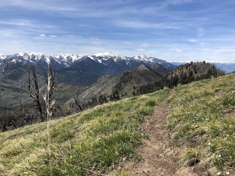 Descending off the ridge, into E. Dam Creek Trail.