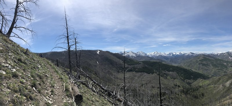 Dead trees. Pretty mountains. Clear trails in June (surprising).