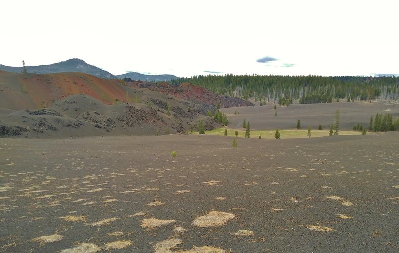 Looking across the volcanic sand, the Painted Dunes are on the left. The green area is a tiny seasonal wet area due to recent snow melt.  Mt. Hoffman, 7,833 ft., is on the left behind the Painted Dunes.