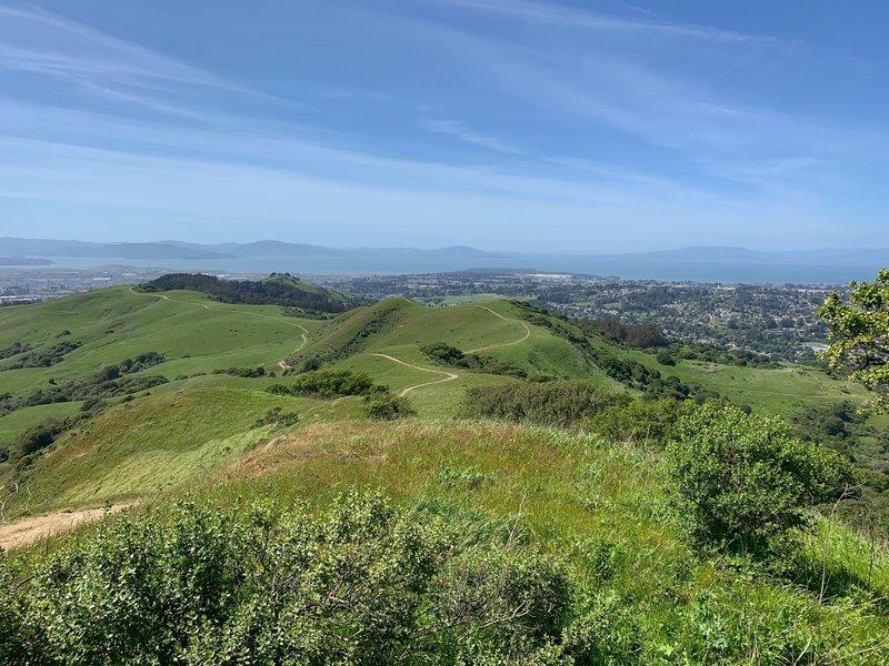 Looking northwest along the San Pablo Ridge Trail.