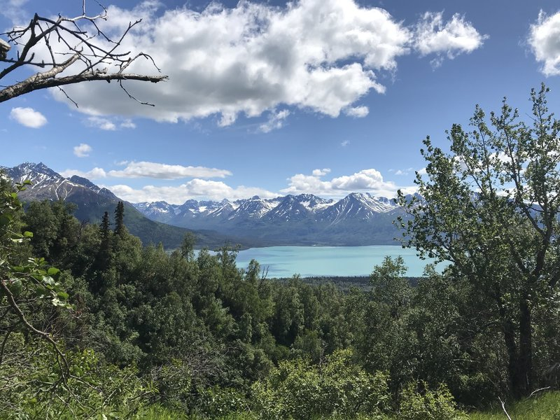 View of Currant Creek on the opposite shoreline on Lake Clark.