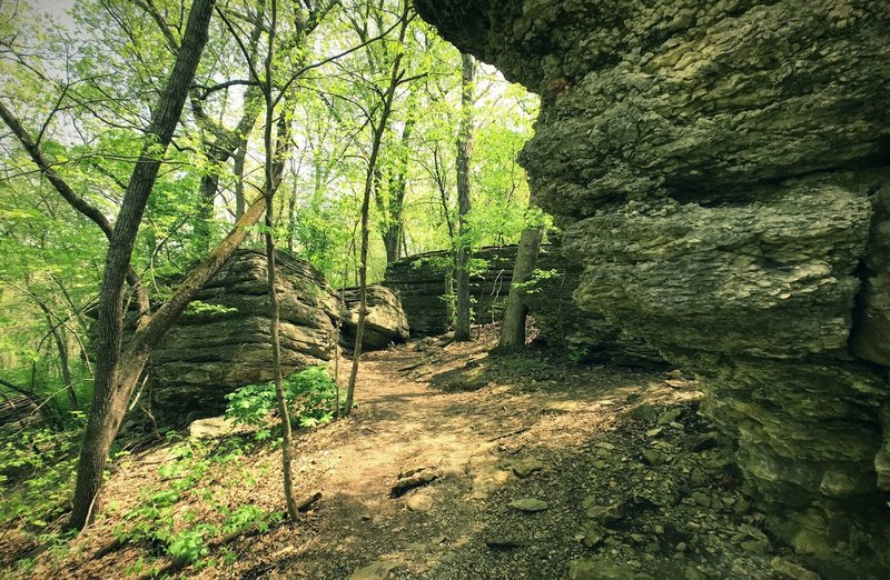 Large limestone bluffs on the backside of the Bethany Falls Trail Loop