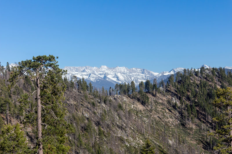 Snow covered mountains deep within Kings Canyon National Park