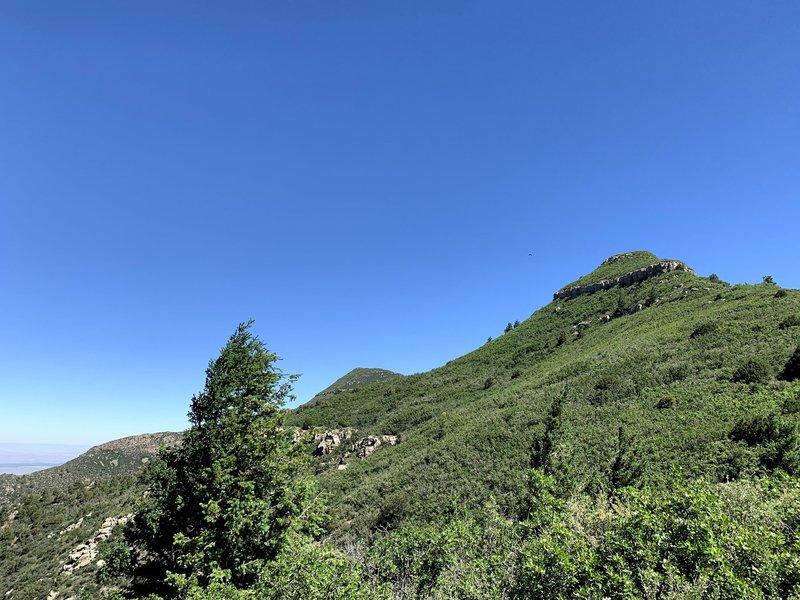 Mosca Peak