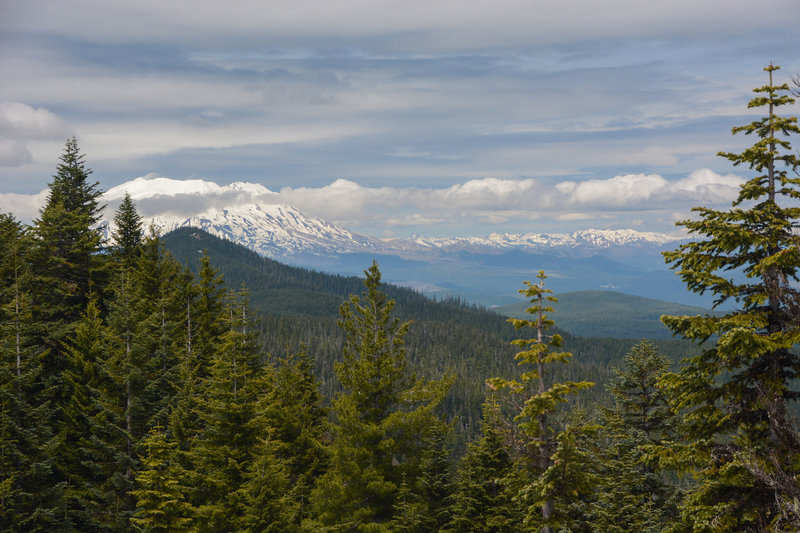Mount St Helens from the summit of Observation Peak