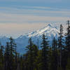 Mount Jefferson from the Mount Beachie Trail