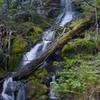 A small falls on Battle Ax Creek