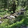 Shackleford Creek