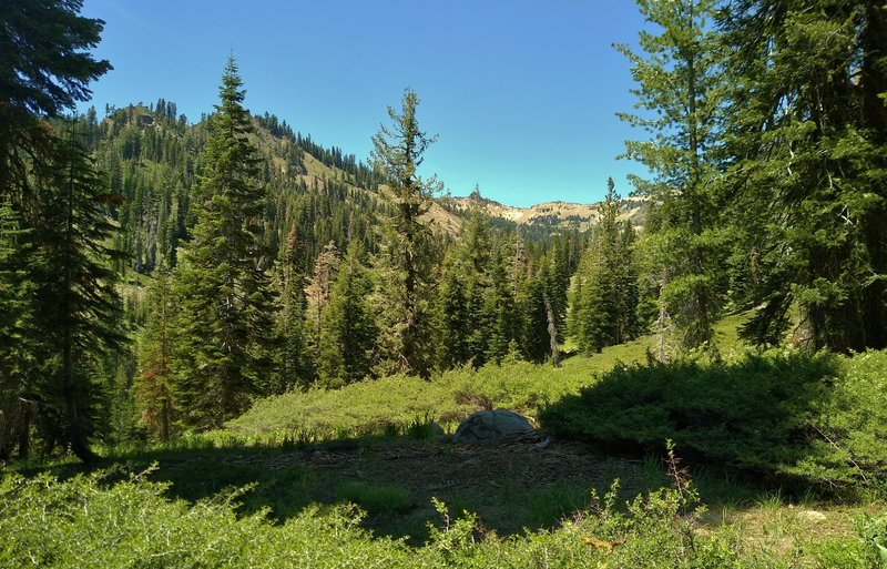 The rugged mountains of Lassen Volcanic National Park are seen through the beautiful fir forest of Crumbaugh Lake Trail.