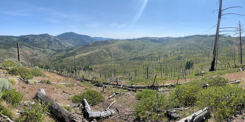 Panoramic view of the burn.