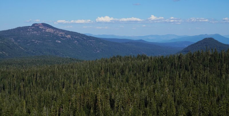 Looking south from the trail to Kings Creek Falls.
