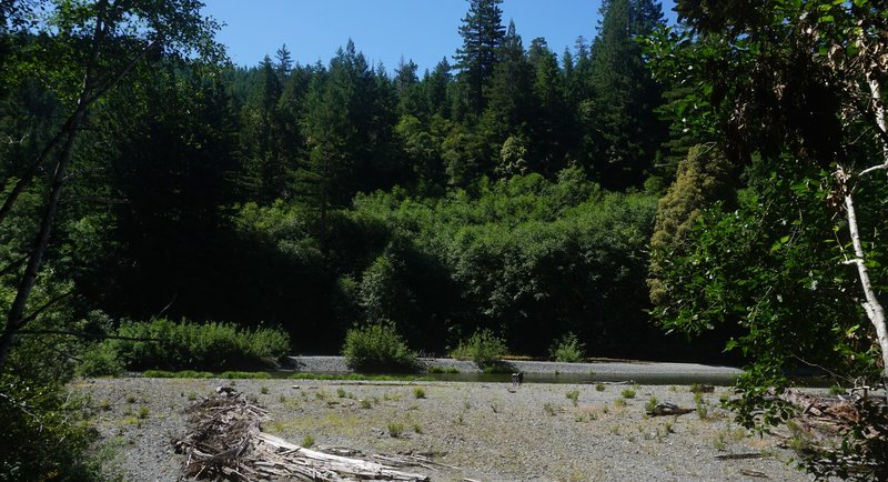 Redwood Creek from the Tall Trees Grove Trail.