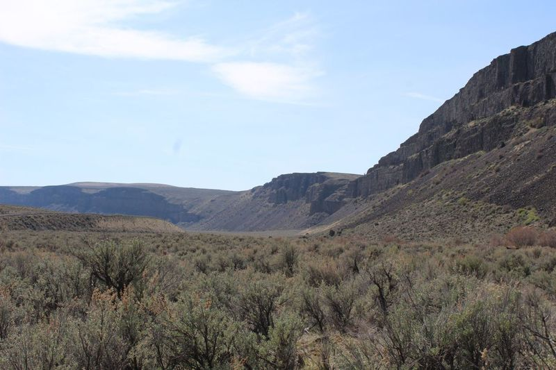 Southwestern view of Moses Coulee Wall from Dutch Henry Falls Trail.