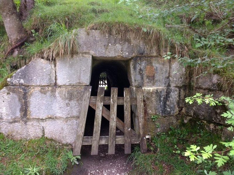A little shortcut through a tunnel.
