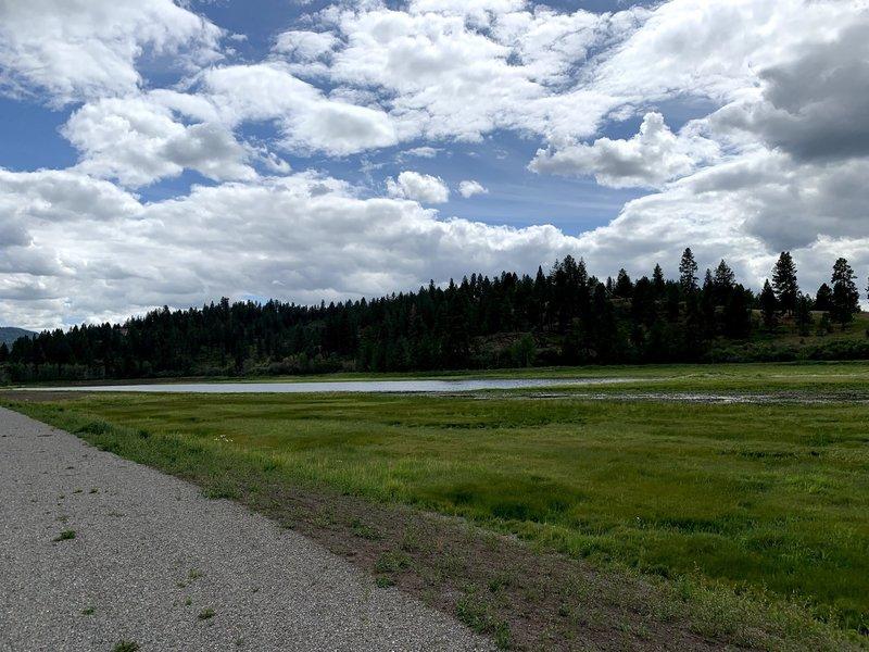 Saltese Wetlands