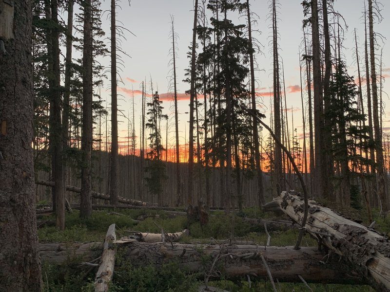 Sunset at a high camp near where #94 and #95 meet.