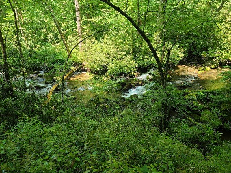 Deep Creek on the Deep Creek Trail