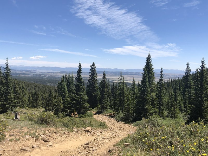 Near top of Browns Pass Trail