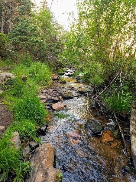 Flowing creek alongside most of trail