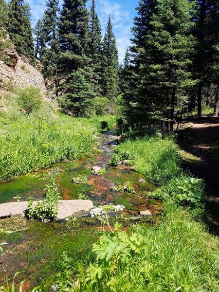 Hike alongside a beautiful creek most of the way!