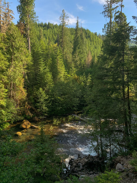 The Breitenbush River below the trail in early summer.