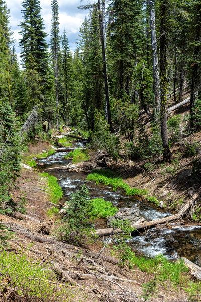 Grassy Creek