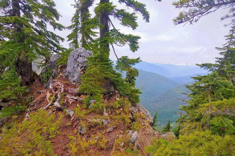 View looking E-SE; maybe 300' trail feet from the summit (out of shot to right).